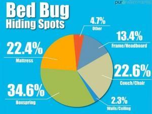 bedbug hiding spots