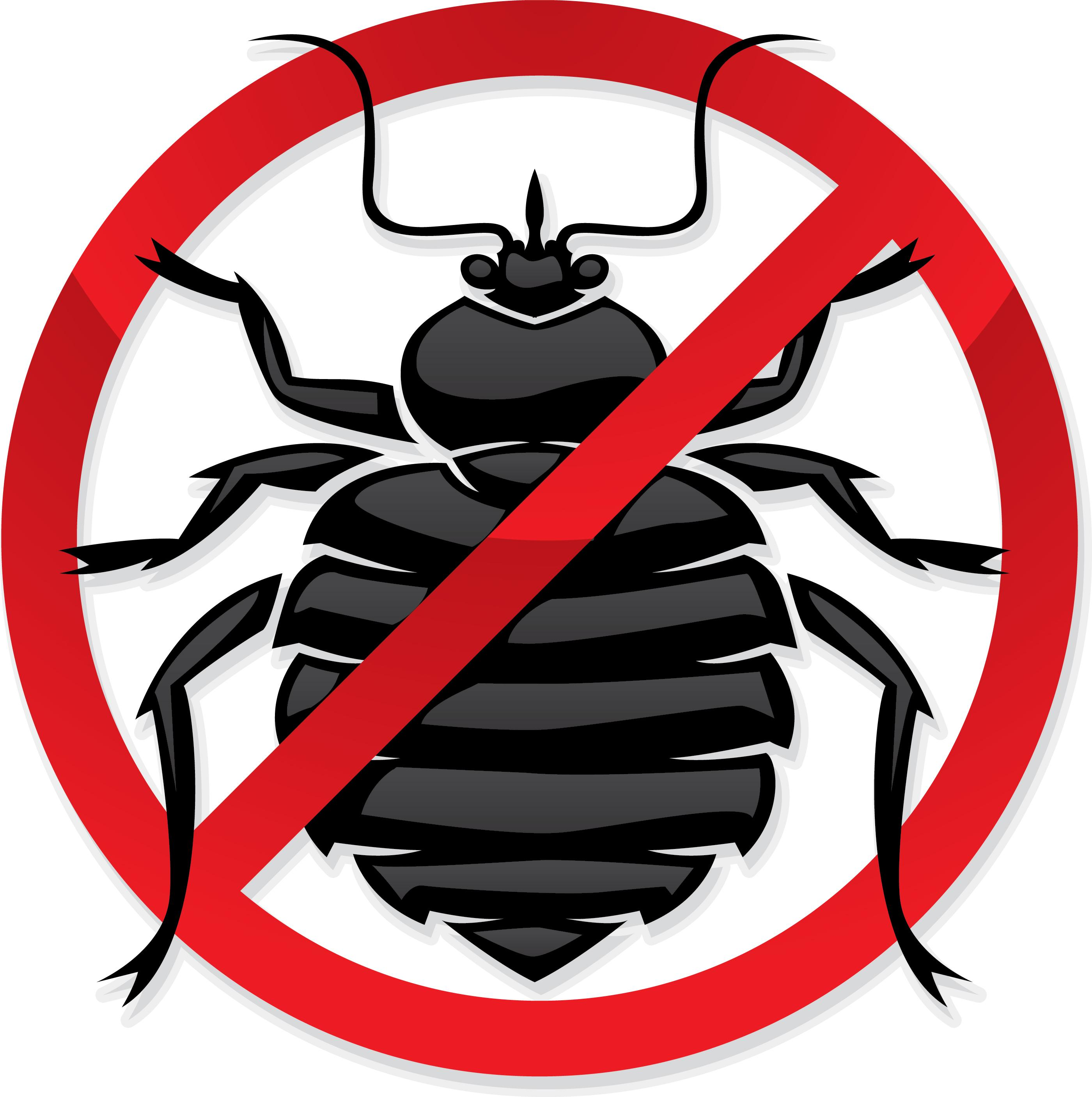Image result for Bed Bugs Can Be Handled By A Pest Control Service