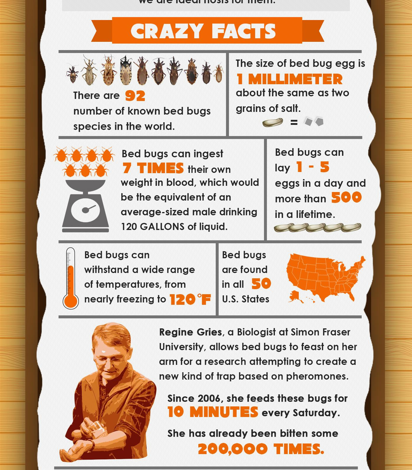 7 Crazy Facts About Bed Bugs - Infographic - Bed Bug Guide